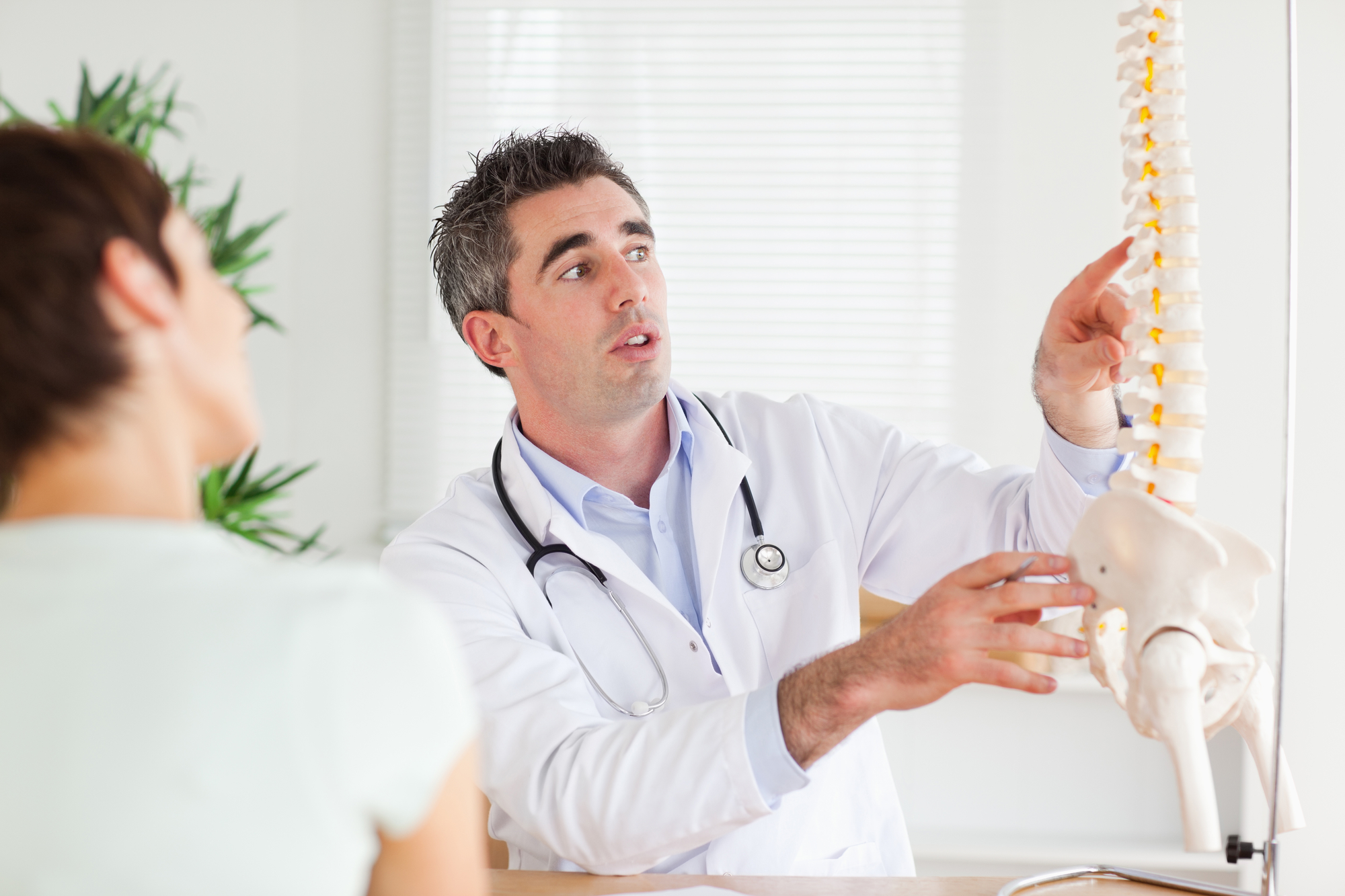 Chiropractor With Spine